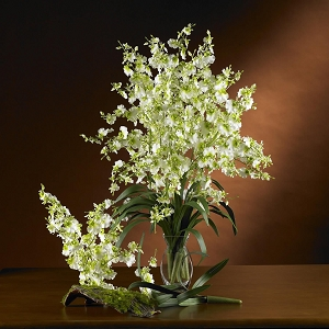 Green Dancing Lady Silk Orchid Flower (6 Stems)