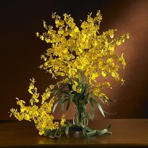 Yellow Dancing Lady Silk Orchid Flower (6 Stems)