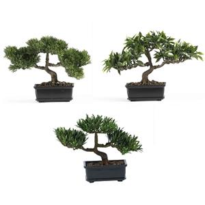 12'' Bonsai Silk Plant Collection (Set of 3)