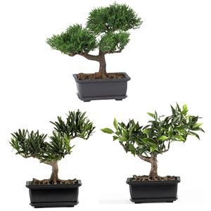 8.5'' Bonsai Silk Plant Collection (Set of 3)