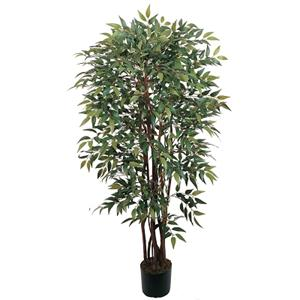 4' Smilax Silk Tree