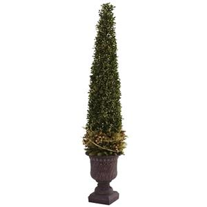 Mixed Golden Boxwood & Holly Topiary with Urn