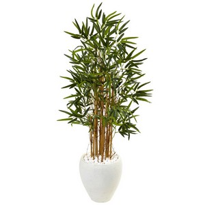 4 ft Bamboo Tree in White Oval Planter