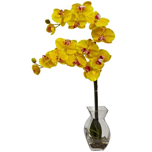 Yellow Phalaenopsis Orchid w/Vase Arrangement