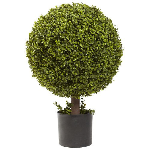 27'' Boxwood Ball Topiary