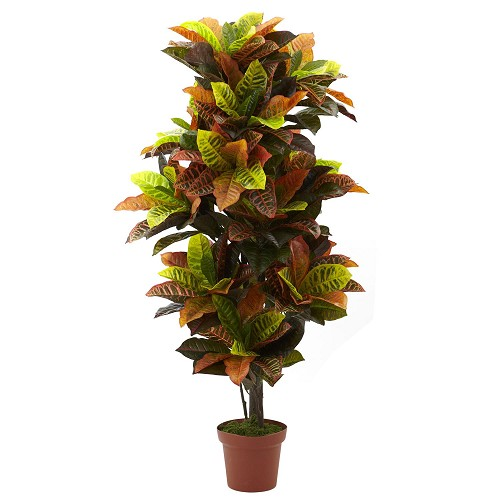 56'' Croton Plant (Real Touch)