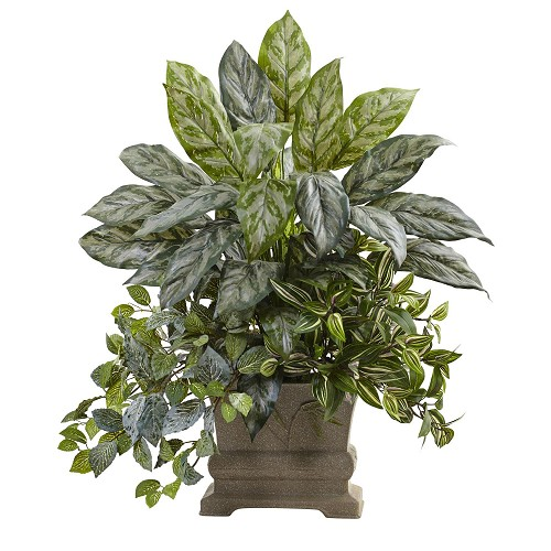 28'' Mixed Silver Queen, Wandering Jew & Fittonia w/Planter