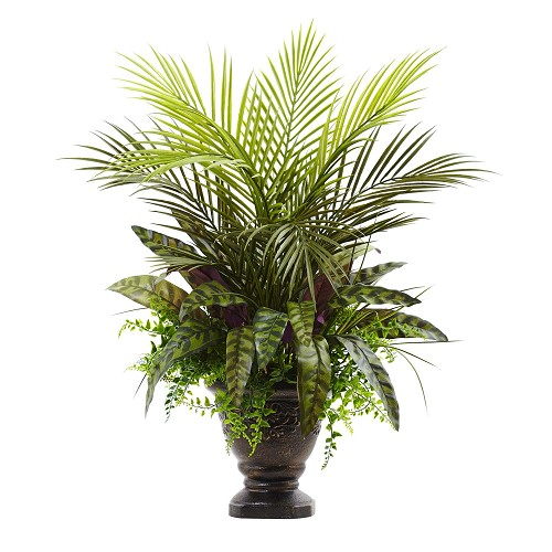 27'' Mixed Areca Palm, Fern & Peacock w/Planter
